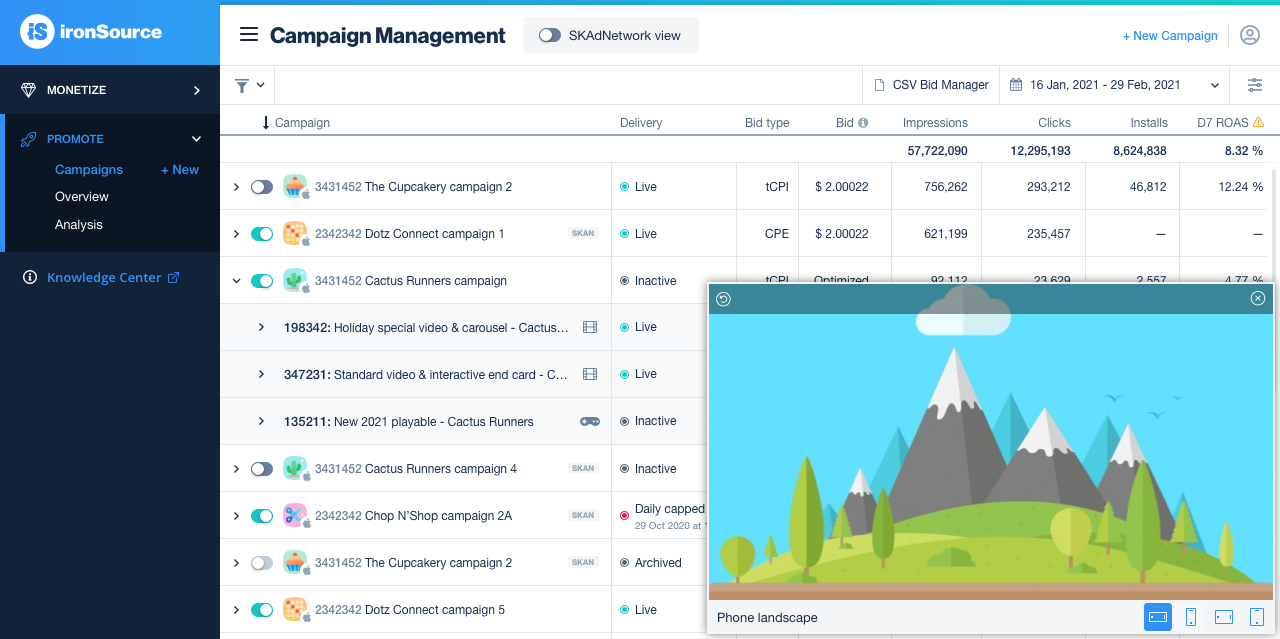 Creative preview on Campaign Management page